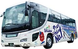 バスのみプラン